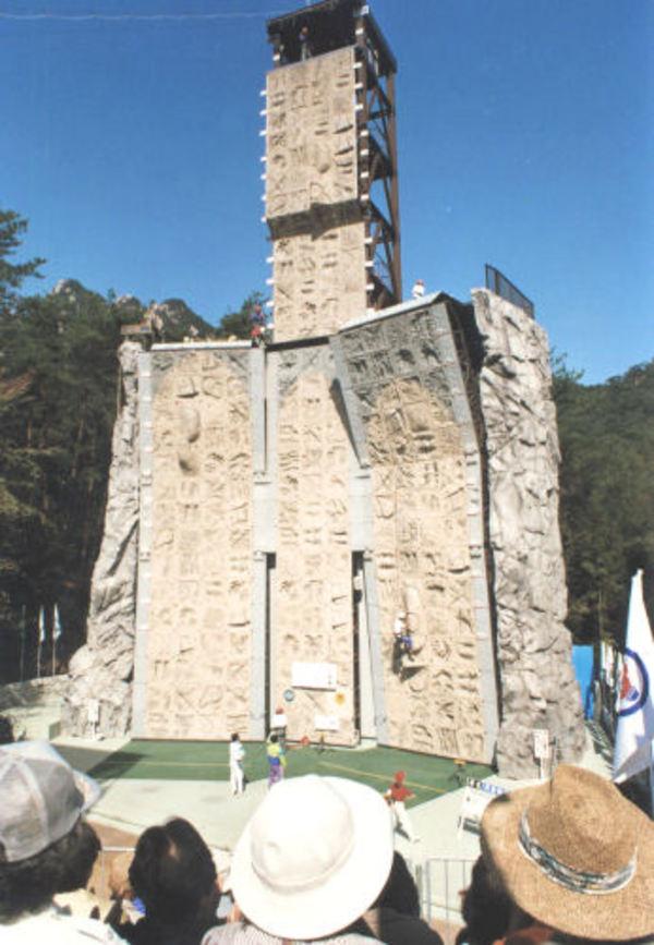 1996年第51回国民体育大会[広島県]のサムネイル
